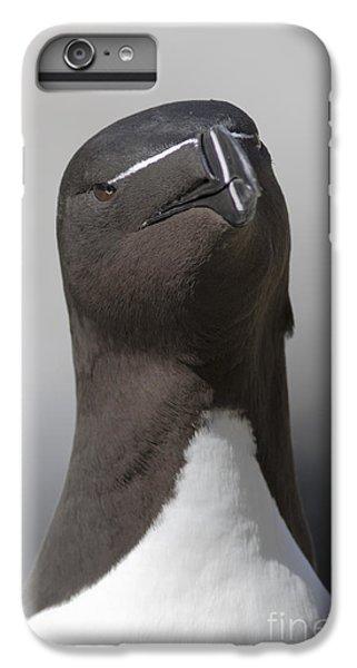 Razorbill IPhone 6 Plus Case by Karen Van Der Zijden