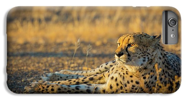 Reclining Cheetah IPhone 6 Plus Case by Inge Johnsson