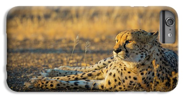 Reclining Cheetah IPhone 6 Plus Case by Inge Johnsson