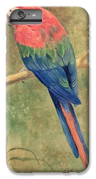 Macaw iPhone 6 Plus Case - Red And Blue Macaw by Henry Stacey Marks