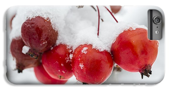 IPhone 6 Plus Case featuring the photograph Red And White by Sebastian Musial