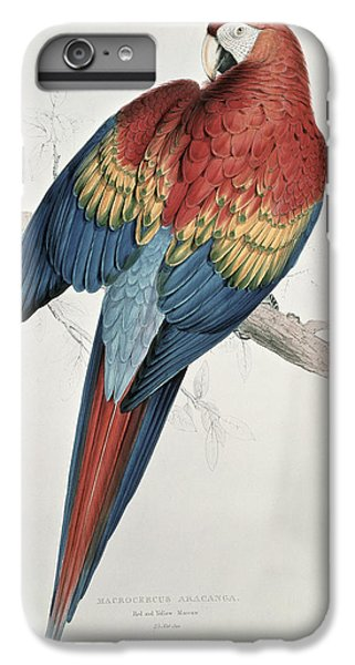 Macaw iPhone 6 Plus Case - Red And Yellow Macaw  by Edward Lear