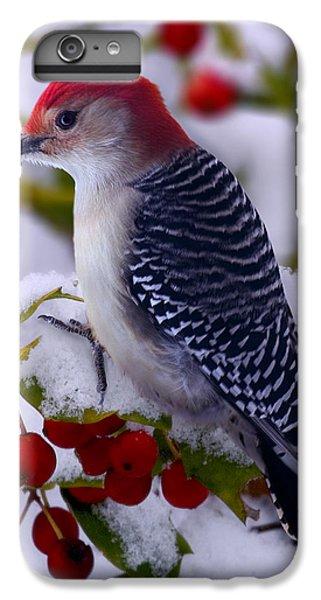 Woodpecker iPhone 6 Plus Case - Red Bellied Woodpecker by Ron Jones