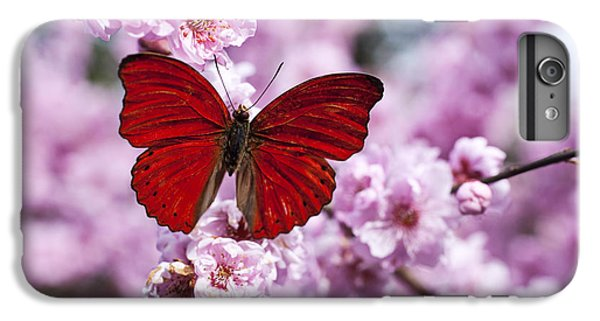 Beautiful iPhone 6 Plus Case - Red Butterfly On Plum  Blossom Branch by Garry Gay