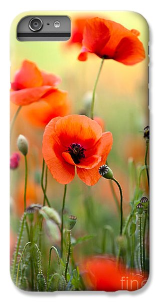 Nature iPhone 6 Plus Case - Red Corn Poppy Flowers 06 by Nailia Schwarz