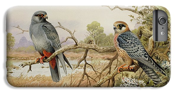 Red-footed Falcons IPhone 6 Plus Case by Carl Donner