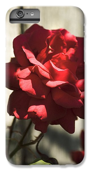 IPhone 6 Plus Case featuring the photograph Red Rose by Yulia Kazansky