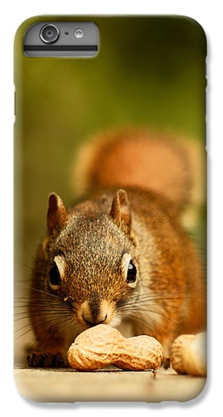 Red Squirrel   IPhone 6 Plus Case by Cale Best