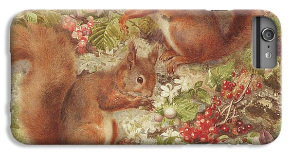 Red Squirrels Gathering Fruits And Nuts IPhone 6 Plus Case