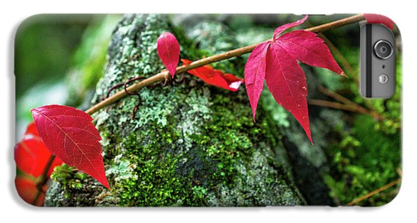 IPhone 6 Plus Case featuring the photograph Red Vine by Bill Pevlor