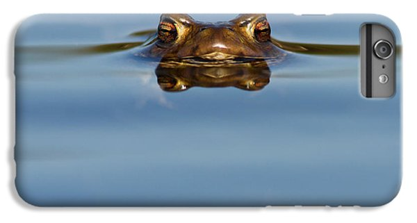 Reflections - Toad In A Lake IPhone 6 Plus Case
