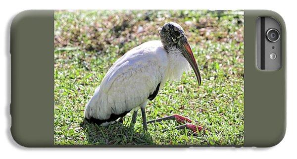 Resting Wood Stork IPhone 6 Plus Case