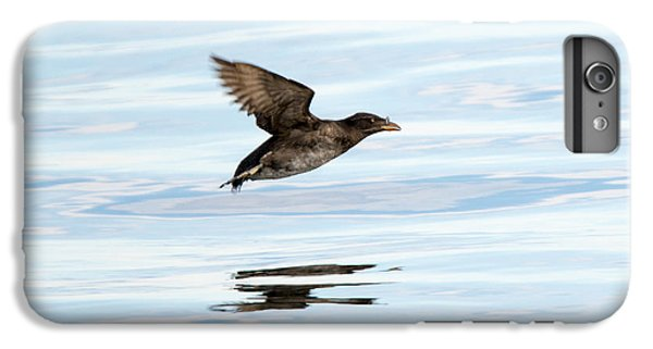 Rhinoceros Auklet Reflection IPhone 6 Plus Case by Mike Dawson