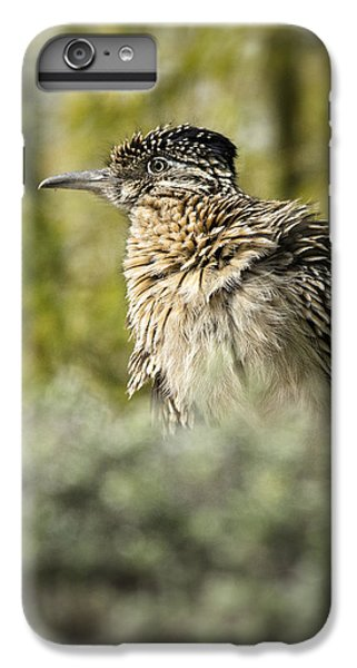 Roadrunner On Guard  IPhone 6 Plus Case