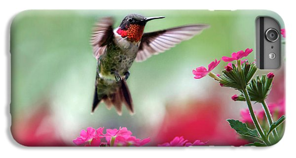 Ruby Garden Jewel IPhone 6 Plus Case by Christina Rollo