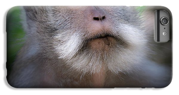 Sacred Monkey Forest Sanctuary IPhone 6 Plus Case by Larry Marshall