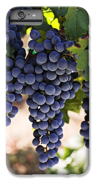 Sauvignon Grapes IPhone 6 Plus Case