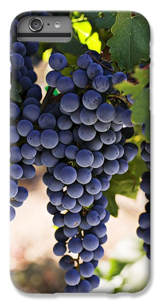 Sauvignon Grapes IPhone 6 Plus Case by Garry Gay