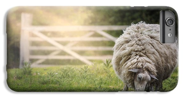 Sheep IPhone 6 Plus Case by Joana Kruse