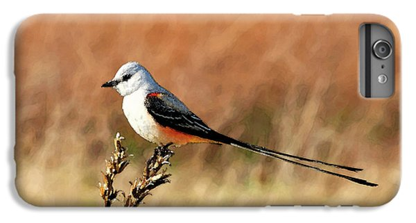 Scissor-tailed Flycatcher IPhone 6 Plus Case by Betty LaRue
