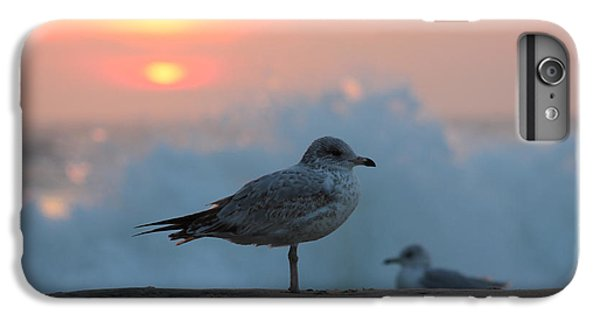 Seagull Seascape Sunrise IPhone 6 Plus Case