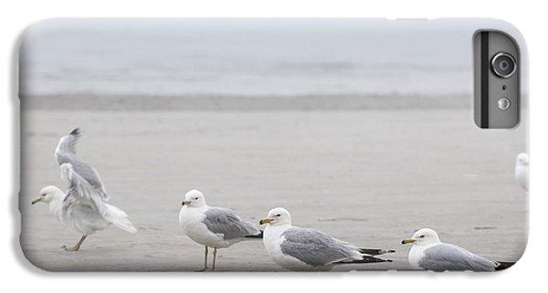 Seagulls On Foggy Beach IPhone 6 Plus Case
