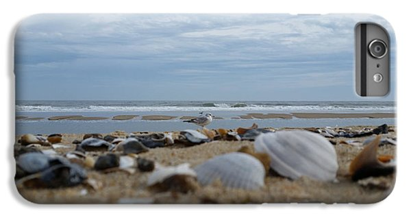 Seashells Seagull Seashore IPhone 6 Plus Case