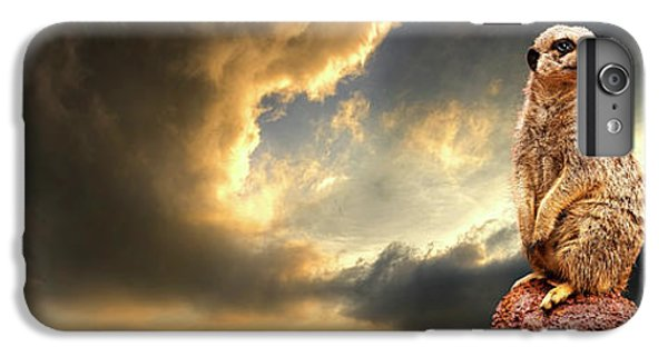 Meerkat iPhone 6 Plus Case - Sentry Duty by Meirion Matthias