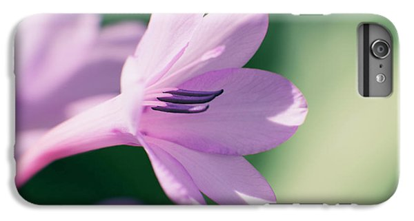IPhone 6 Plus Case featuring the photograph She Listens Like Spring by Linda Lees