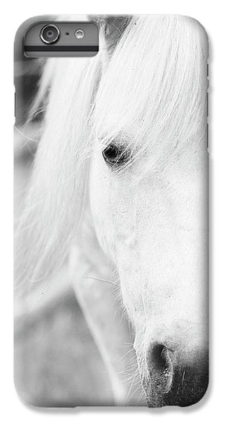 Shetland Pony IPhone 6 Plus Case by Tina Lee