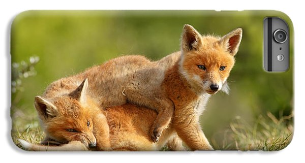 Sibbling Love - Playing Fox Cubs IPhone 6 Plus Case by Roeselien Raimond