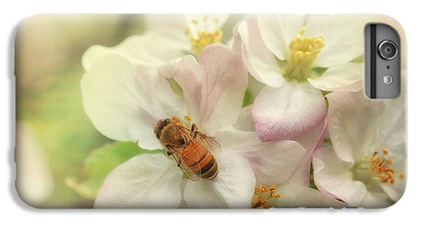 Honeybee iPhone 6 Plus Case - Signs Of Spring by Susan Capuano