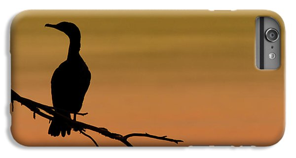Silhouette Cormorant IPhone 6 Plus Case by Sebastian Musial