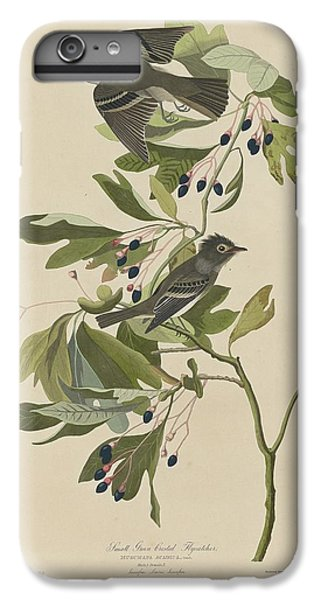 Flycatcher iPhone 6 Plus Case - Small Green-crested Flycatcher by Dreyer Wildlife Print Collections