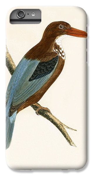 Smyrna Kingfisher IPhone 6 Plus Case by English School