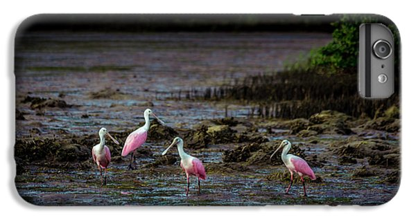 Ibis iPhone 6 Plus Case - Spooning Party by Marvin Spates
