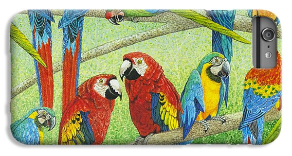 Macaw iPhone 6 Plus Case - Spreading The News by Pat Scott
