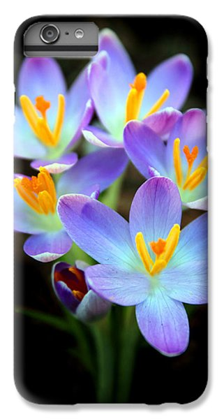 IPhone 6 Plus Case featuring the photograph Spring Crocus by Jessica Jenney