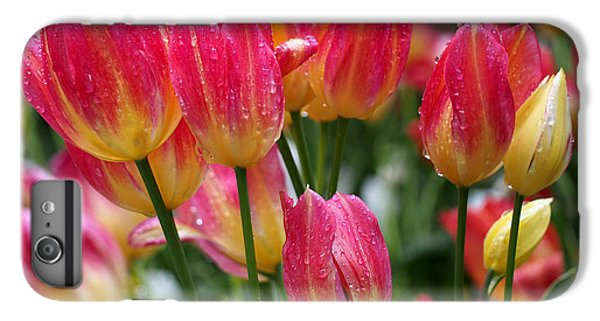 Spring Tulips In The Rain IPhone 6 Plus Case by Rona Black