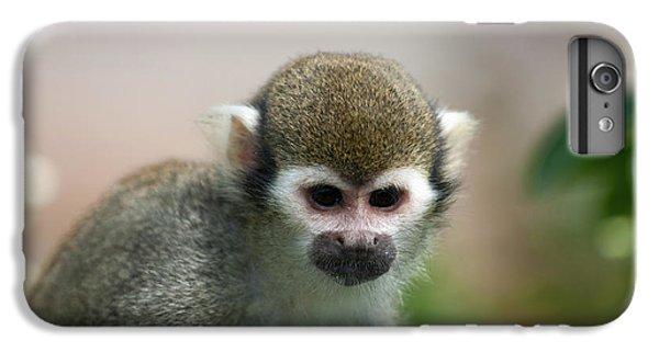 Squirrel Monkey IPhone 6 Plus Case by Amanda Elwell