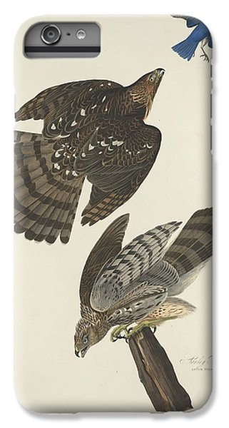 Stanley Hawk IPhone 6 Plus Case by Dreyer Wildlife Print Collections