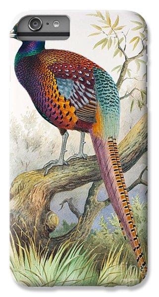 Strauchs Pheasant IPhone 6 Plus Case