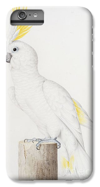 Sulphur Crested Cockatoo IPhone 6 Plus Case