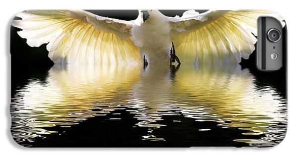 Cockatoo iPhone 6 Plus Case - Sulphur Crested Cockatoo Rising by Sheila Smart Fine Art Photography