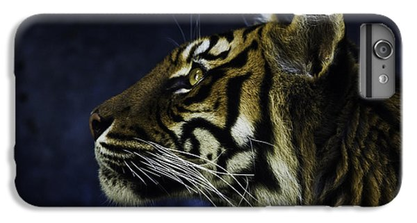 Sumatran Tiger Profile IPhone 6 Plus Case by Avalon Fine Art Photography