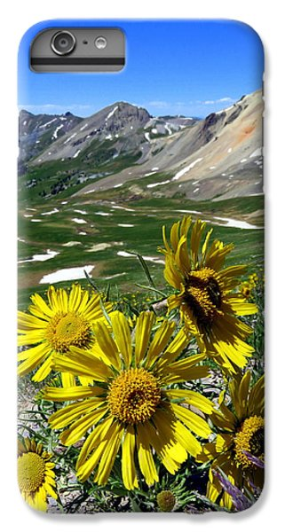 Summer Tundra IPhone 6 Plus Case by Karen Shackles