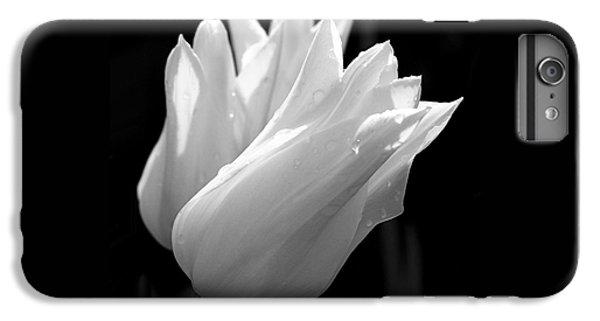 Sunlit White Tulips IPhone 6 Plus Case