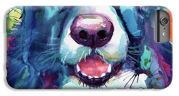 Follow iPhone 6 Plus Case - Surprised Border Collie Watercolor by Svetlana Novikova