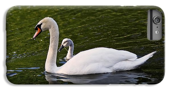 Swan Mother With Cygnet IPhone 6 Plus Case