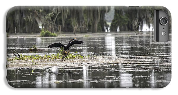 Loon iPhone 6 Plus Case - The Announcer  by Betsy Knapp